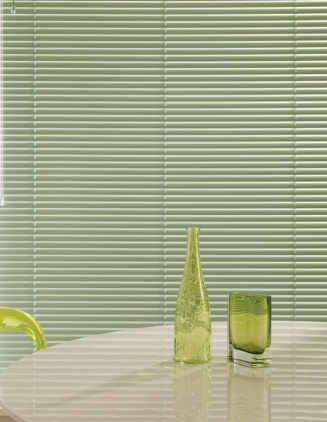 Fern Green Window blind
