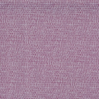 Emery Berry - Vertical Blinds