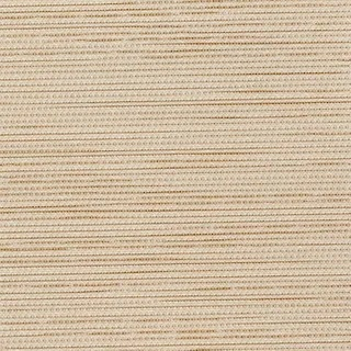 Pleated Blinds Paris Beige - Pleated Blinds